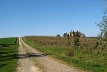 Angoli del Chianti - Toscana