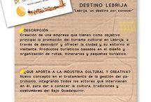 CATA IDEAS. / DESTINO LEBRIJA.
