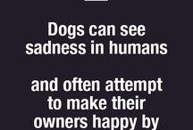 Adevăruri psihologie