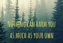 Citas de Buddha