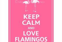 Pink Flamingos / by Sheri Gent