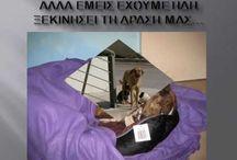 Τhey deserve.....PLEASE