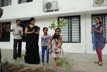 Tree plantation Day
