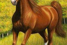 Cosas que comprar  caballos