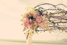 ❤ My Thailand Wedding ❤ / by Janeke Els