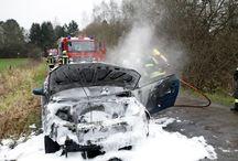 Blaulicht / Polizei + Feuerwehr