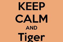 Go Tigers / by Kim Garrison