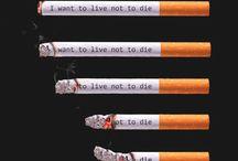 cigarette_infographie