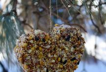 Feeling Crafty? / by Jane Roper