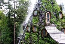 Unique Lodging Experiences / Make every moment of your trip count by booking your stay at a unique lodging alternative! Find unique hotels, B&Bs, cabins, yurts, beautiful designs and architecture, and all kinds of offbeat or extraordinary alternative lodging experiences.