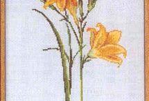 Haft liliowce