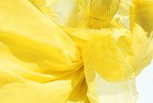 Pantone 2009: Mimosa / PANTONE Color of the Year 2009: Mimosa (14-0848)