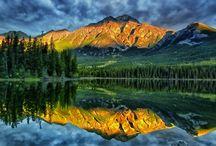 Nature / by Dr. Joyce Knudsen