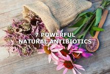 Natural Health and Beauty