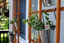 For the Garden & Stuff