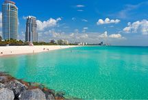 Florida / by Rachel Whelton