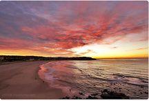 Beach, Art Studio / by Kathy Carr