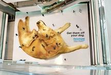 Brilliant Advertising
