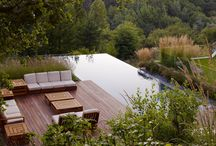 new forest low energy home / Landscape ideas
