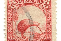 New Zealand / What it is to live here