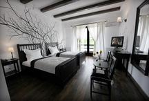 Camerele conacului / Conacul Archia va ofera 19 camere tematice, 2 duplexuri si o vila.