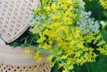 Baskets met flowers
