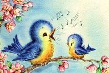 képek madárkás