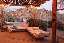 Desert Landscaping / Mojave Dry Goods Co: what we love about desert living