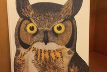 American Museum of Natural History / Beautiful books from AMNH!