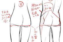 尻の描き方