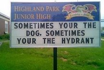Silly signs / Jaw-dropping signs that will tickle your funny bone. Some contain grammar gaffes that make you wonder where these people went to school. Hilarity guaranteed!