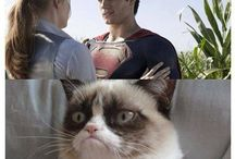 Grumpy Cat / Grumpy cat De leukste!
