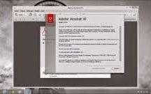 Adobe Reader 11.0.08