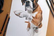 Kutyás rajzok