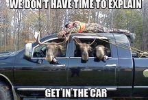 Moose Humour