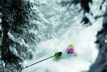 Powder Days / Those days you are forever wishing for