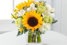 Summer Favorites / by Coady Florist