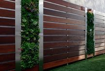 Feature Garden Wall