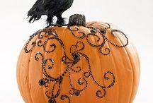 pumpkins / by Camille Baldwin