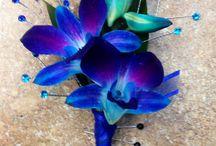 Lila orchideák.
