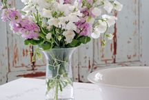 Flowers / by Daphne Volk