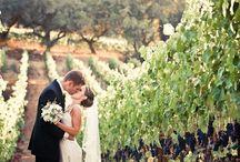 Wedding photos for me to take