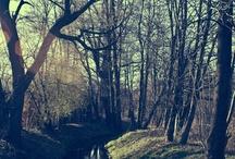 Cieszyn, Těšín - Place that warms my heart, my place in the world
