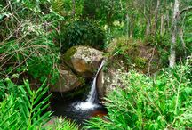 """Pousada Picinguaba / Em tupi-guarani, Picinguaba quer dizer """"refúgio dos peixes"""". A pousada Picinguaba está localizada em uma tranquila baía no coração do Parque Natural da Mata Atlântica em uma pequena vila de pescadores na região de Ubatuba e à meia hora de carro de Paraty. //// Pousada Picinguaba is located in a tranquil bay at the heart of the Atlantic Forest Natural Park within a small fisherman's village in the Ubatuba region and a half hour away from Paraty."""