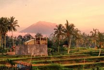 Beautifuly Bali. Nature-life-urban-vacation. / Pic about Balinese culture, urban life, nature, and all of my vacations.