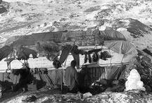 Shackleton Elephant Island