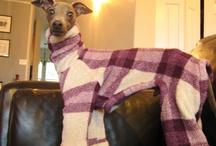 Dog coats / Coats, pjs and snoods for Luna