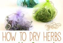 How to dry herbs / seeds