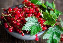 fruites/berries/legumes