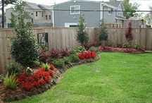 Landscaping in the front and back yard